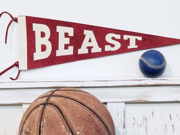 Beast Felt Sports Pennant.  Custom and Personalized pennants for the baby nursery, kids rooms, teen spaces and sports decor interiors.Picture